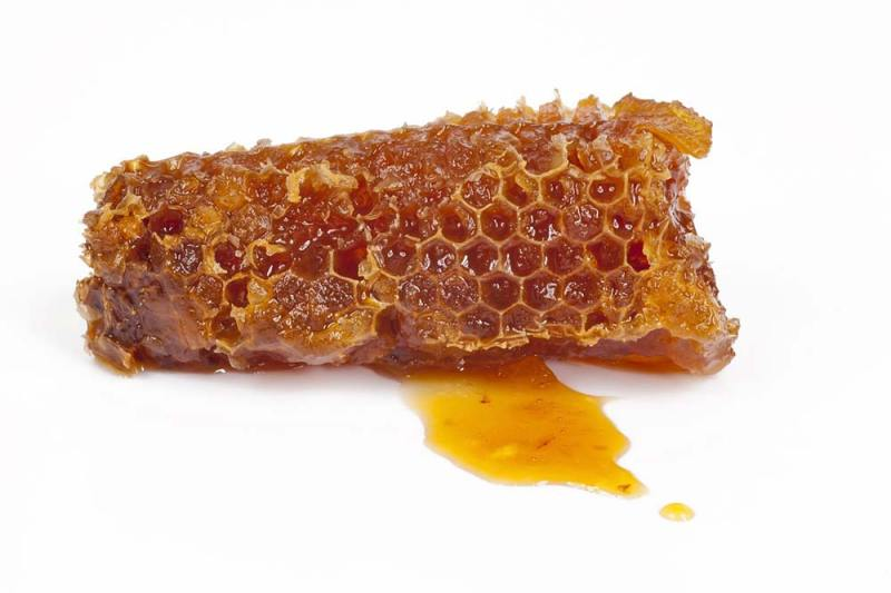 beneficii propolis