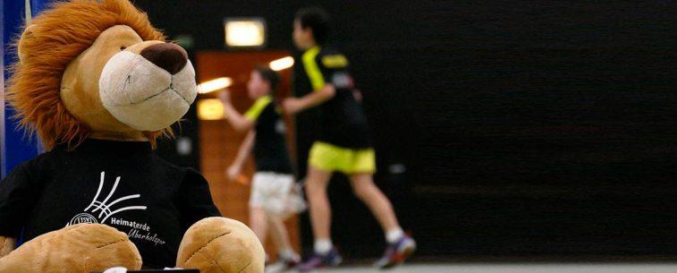 https://i0.wp.com/www.tsv-heimaterde.de/wp-content/uploads/2016/12/badminton_03.jpg?w=757