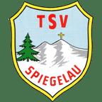 TSV Logo - klein - 114x114 - transparent