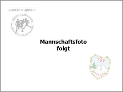 C-Jugend des TSV Spiegelau 2012