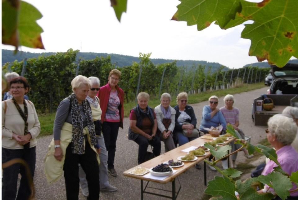 seniorinausflug2016weinsberg_1