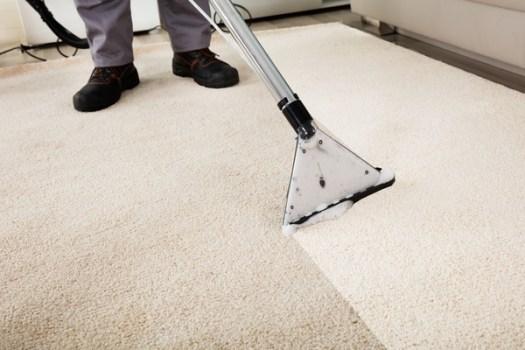 carpet cleaning augusta ga