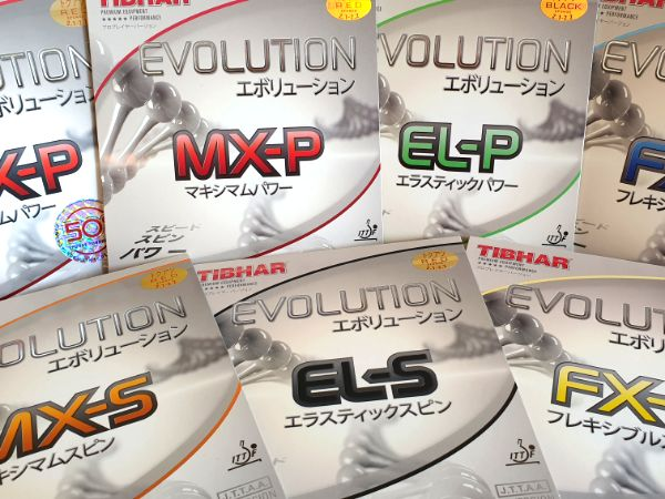 Tibhar Evolution Test