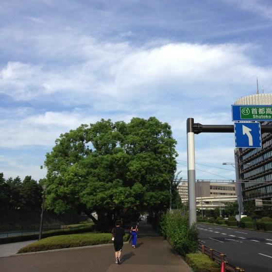 久々皇居11kmラン!そして東京マラソン落選  [カラダログ 2012/09/26]