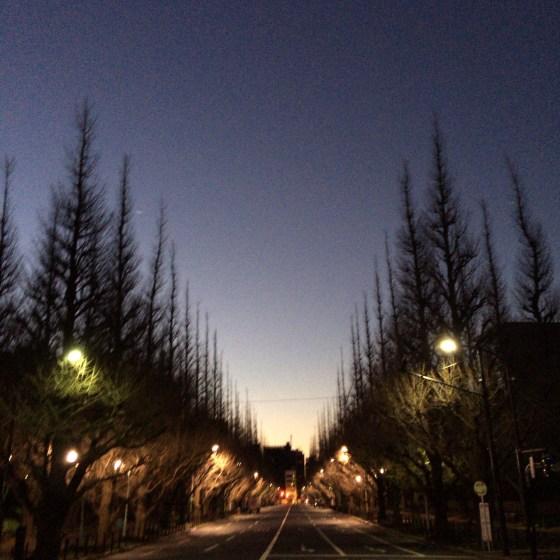 荘厳なる夜明けの13kmラン — 東京マラソンまで52日![ランニング日誌]