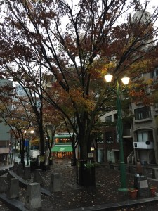 ふくらはぎの張りを取ろう!冷たい雨の朝1kmラン!  [富士山マラソンまで4日・ランニング日誌]