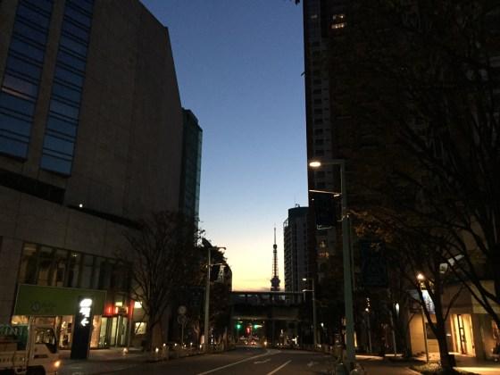 寒いけど気持ちがいい!冬の夜明け5kmラン!  [東京マラソンまで75日・ランニング日誌]