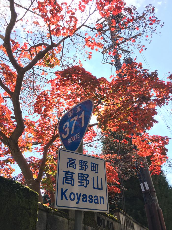 深まる秋とつながる旅に出ました。初日は6時間かけて東京から高野山へ [2015年晩秋の旅 旅行記 その1]