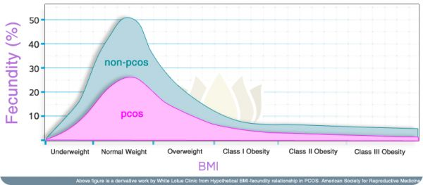 PCOS BMI Weight Relation