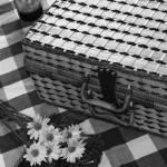 Microsoft_picnic_bw