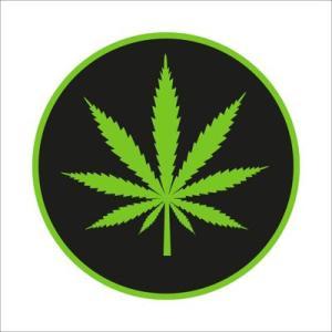 Marijuana-Tell your view to Lt. Gov. John Fetterman @ Downington High School West