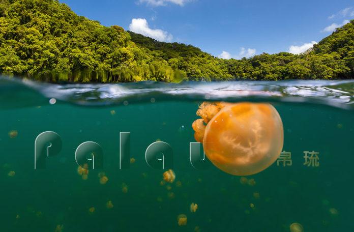 帛琉觀光局在臺灣首度成立辦事處 | 旅報