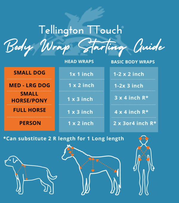 TTouch Body Wrap Guide