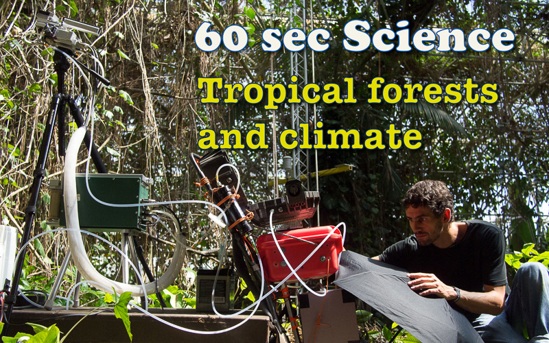 Tropical Forests and Climate (science film 60 sec)