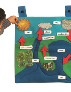 Water cycle wall chart large tts school resources online shop also buy hanging international rh
