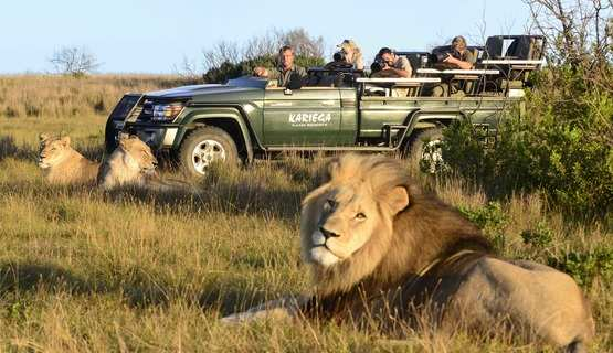 Places We Love: Kariega Game Reserve