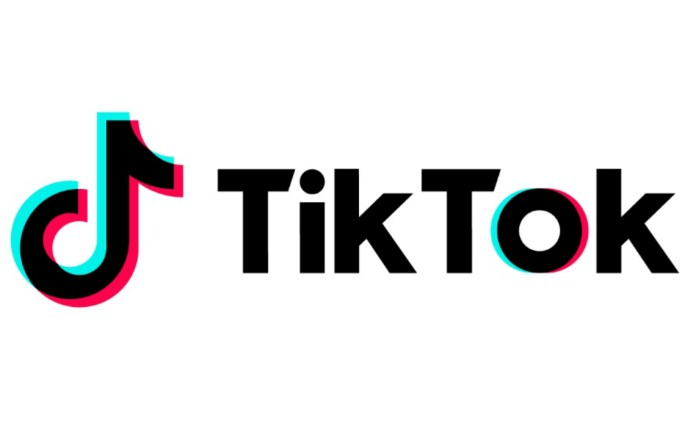Image result for tik tok