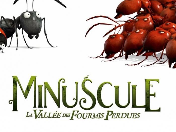 15_cinema_minuscule_recadre