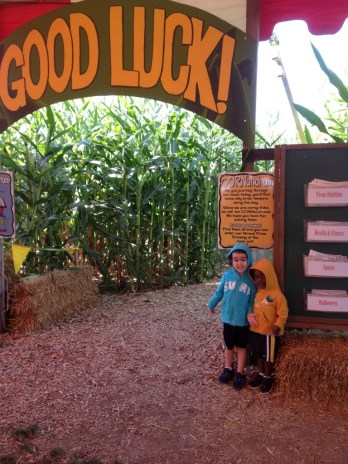 2/3 of my boys at The Pumpkin Patch