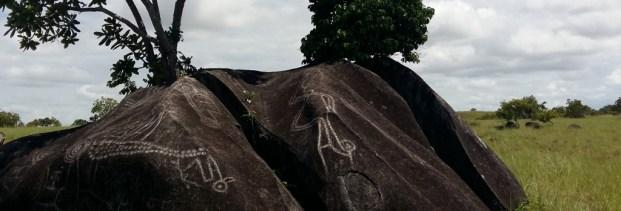 Aishalton Petroglyphs Guyana