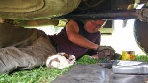 puppy under truck