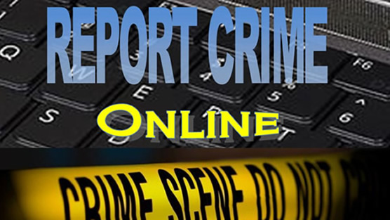 Report NonEmergency Crime Online  Official website of