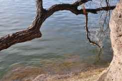 Patagonia Lake-18