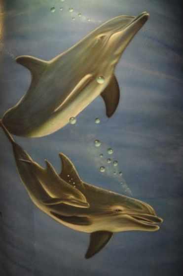 Dolphin Wall