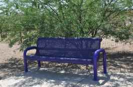 Purple Heart Park bench in dog park