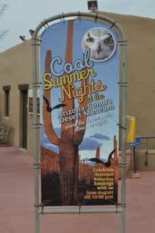 Cool Summer Nights at Arizona-Sonora Desert Museum