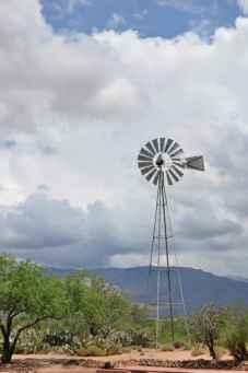 Coyote Creek Tucson