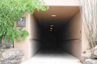 Underwater Viewing at Arizona-Sonora Desert Museum