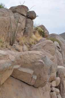 rock formations at Arizona-Sonora Desert Museum