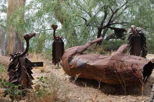 vultures at Arizona-Sonora Desert Museum