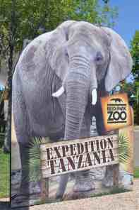 Expedition Tanzania Reid Park Zoo