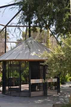 Reid Park Zoo Aviary