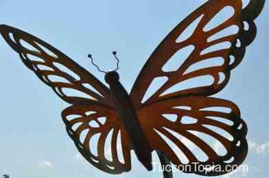 butterfly at Brandi Fenton Memorial Park