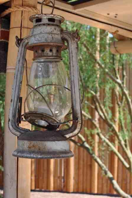 lantern Reid Park Zoo