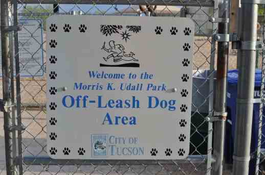 off-leash dog area at Morris K Udall Park