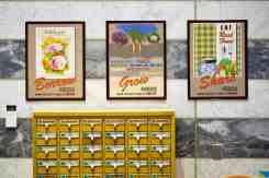 Library Seed Library
