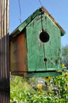 birdhouse at Community Food Bank of Southern Arizona
