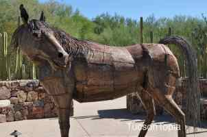 iron horse at Tohono Chul Park