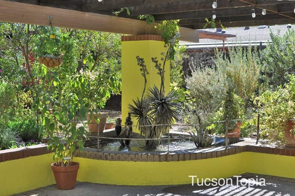 Brightly Colored Patio At Tucson Botanical Gardens