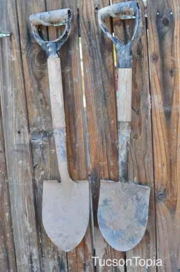 shovels at Tucson Waldorf School