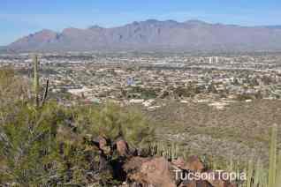 city view from Tumamoc Hill