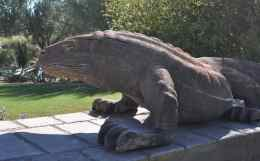 Lizard Art at The Ritz-Carlton Dove Mountain