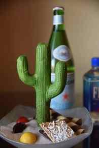 chocolate cactus at Ritz-Carlton Dove Mountain