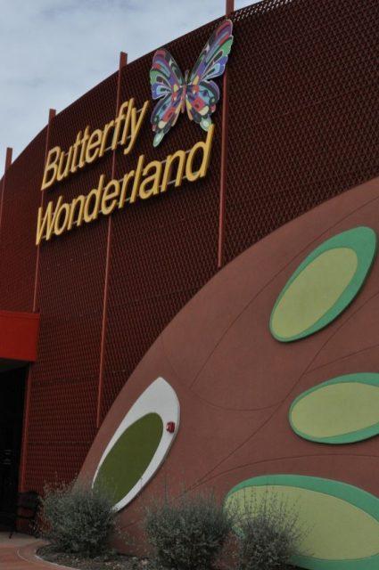 Butterfly Wonderland architecture