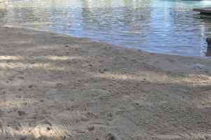 sandy beach at Hyatt Regency Scottsdale