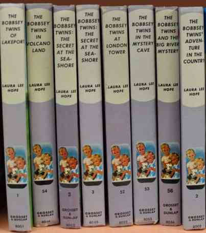 The Bobbsey Twins at the Book Barn